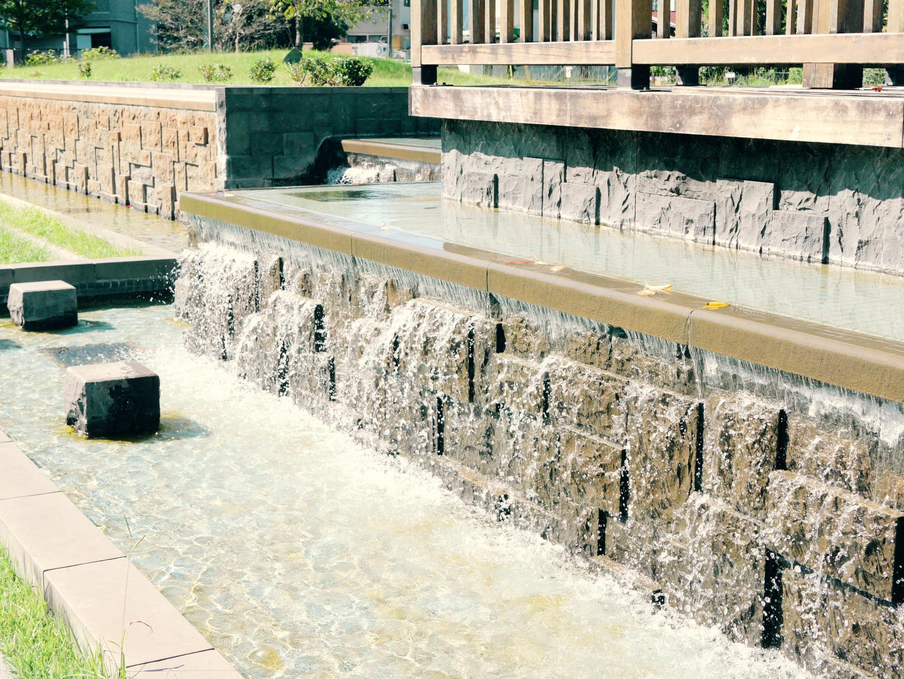 水前寺公園内の湧き水
