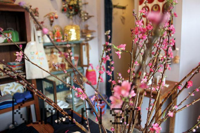 [bloom]天草に咲いた!お花の香りが漂うセレクトショップ