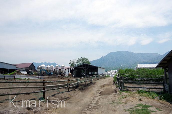 竹原牧場 牧場の様子