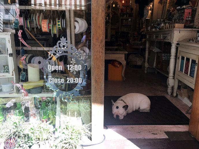 [da stella cadente] 上通りの路地裏にある雑貨屋さんで、日常に潤いを*