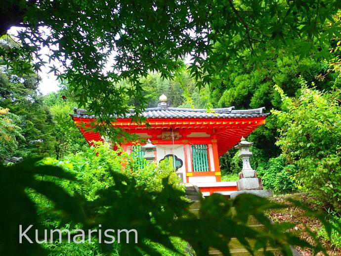 [小野泉水公園] 見どころいっぱい!季節の楽しみもある公園です☆