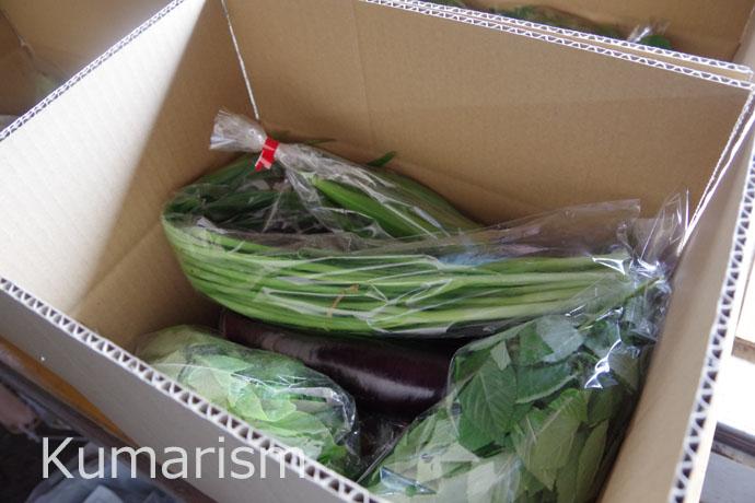 季節の野菜が詰め込まれたセット野菜