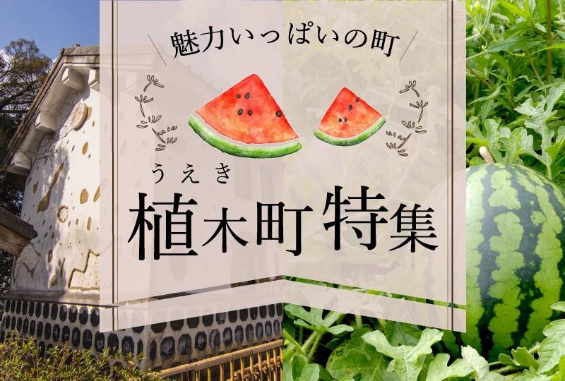 熊本のフルーツが有名な植木温泉へ旅に行こう♪