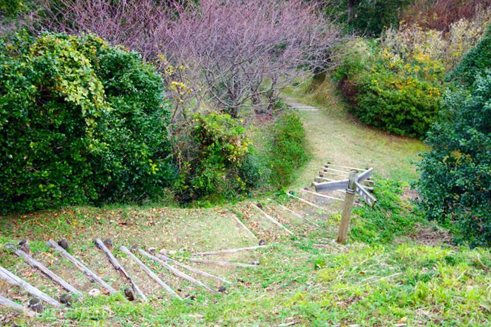 四季咲岬公園 下り道