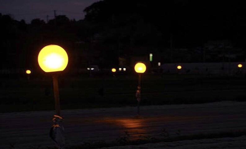 キャベツ畑の防蛾灯