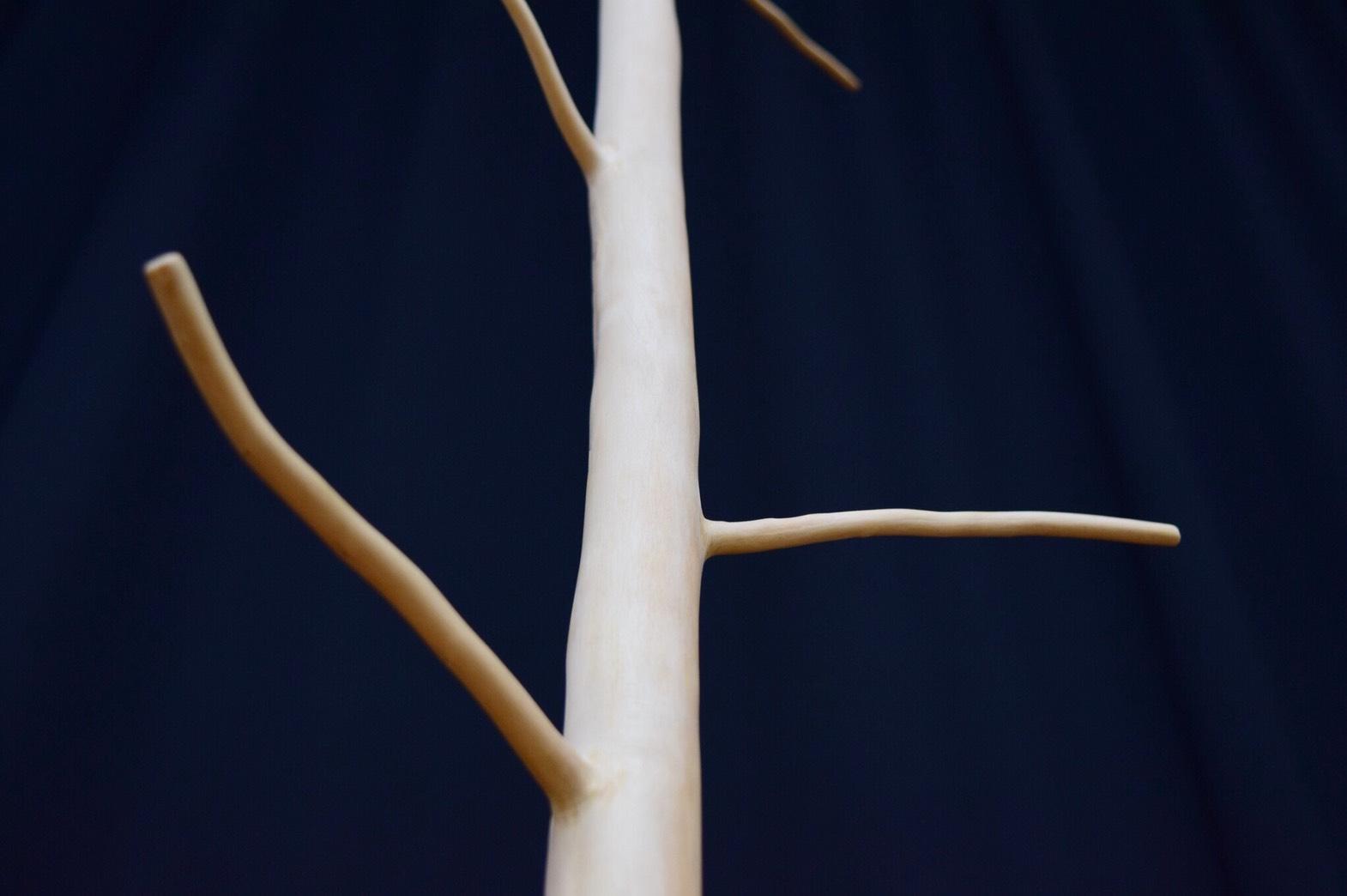 [芦北高校林業科]使い方は無限大!自然そのものを生かしたなんでもかけれるインテリア「なんでもかけ」!