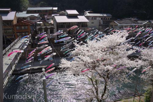 【杖立温泉 鯉のぼり祭り】平成30年4月1日(日)〜5月6日(日)まで開催中!