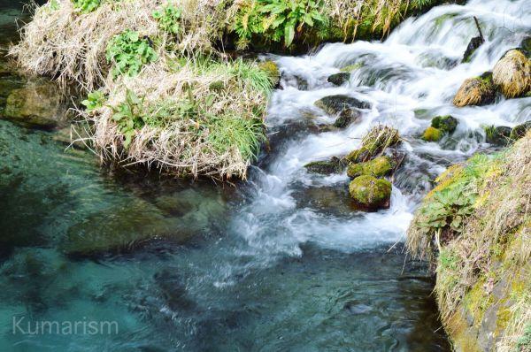 池山水源の透き通った水