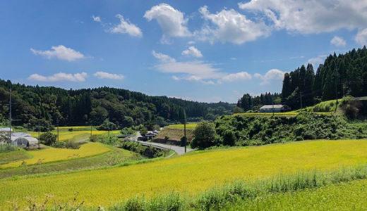 【産山村フットパス】自然を楽しみたいなら?体を動かしたいなら?産山村フットパス!!