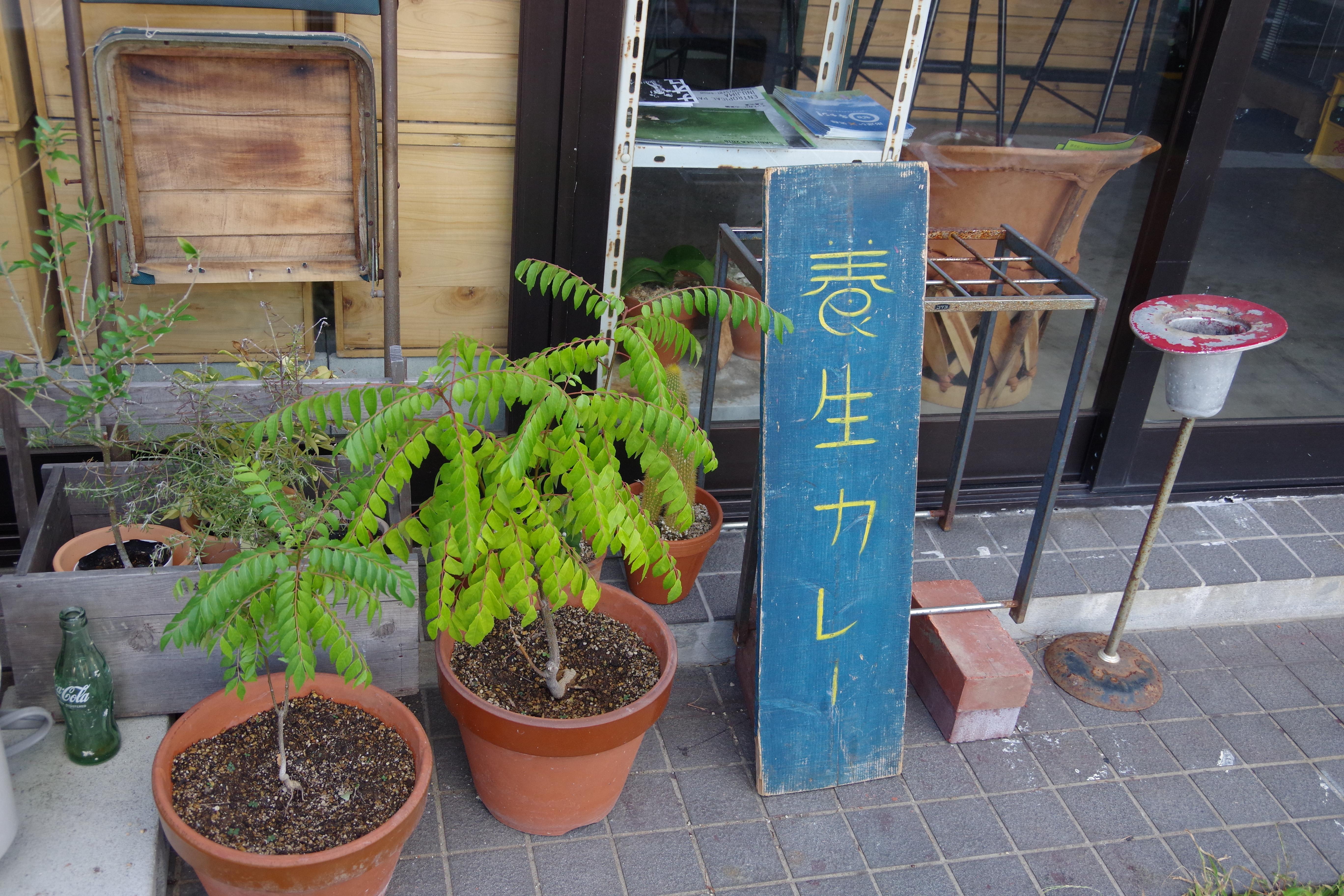 [養生カレー]熊本で爽快なインドカレーを食べるならここ!