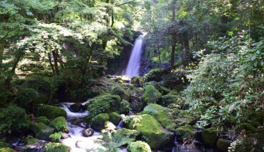 [南阿蘇村・西原村フットパス] 山あり滝あり桜あり!歩いて味わう自然のフルコース!