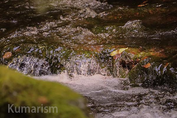 立岩渓谷3