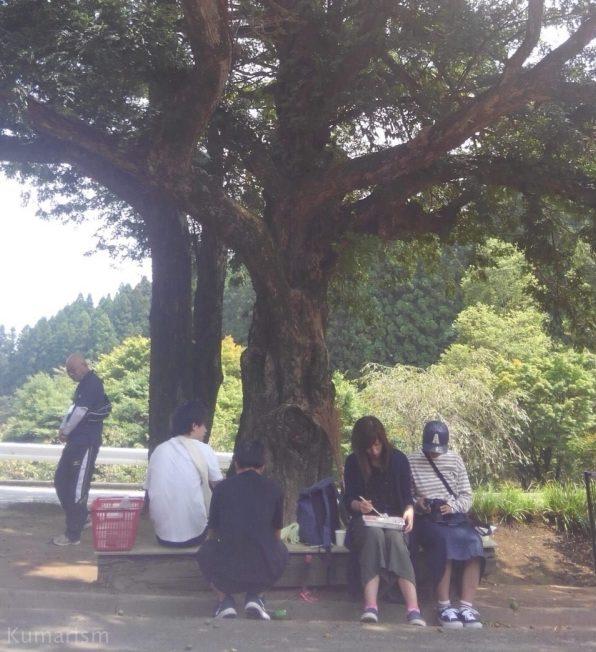 庚申塔のカヤの木の前でお昼ご飯