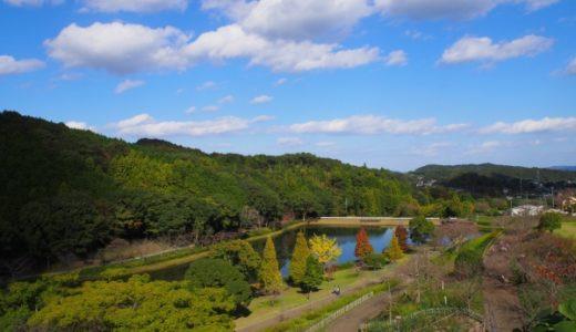[天草日帰りツアー①] スパイスのきいたカレーと自然豊かな公園