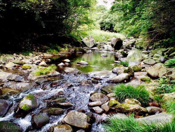 静かに流れる川